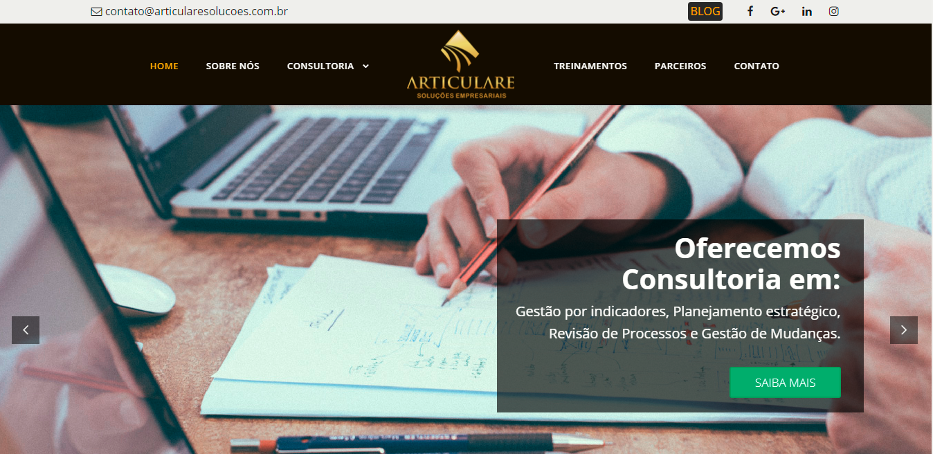 Site ARTICULARE ENVOX Marketing Digital